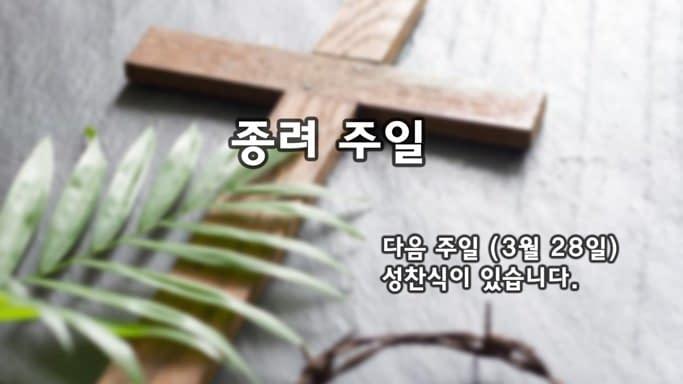 교회 주요 뉴스